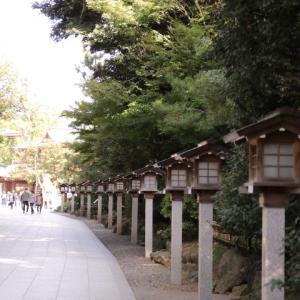 近所の神社とひまわり祭り