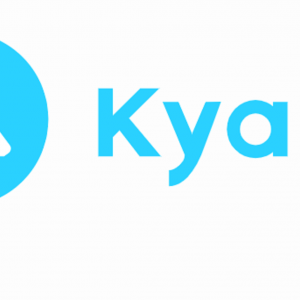 【思考法】Kyashを活用した超ド安定の年利1%【レバレッジこそ正義】