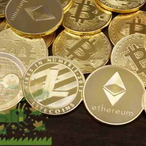 【仮想通貨】私が購入しているのはビットコインではなく○○だ!仮想通貨の未来を見る!