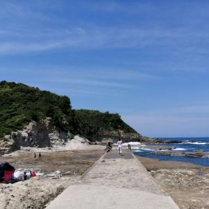 【キャンプレポ】櫛島キャンプ場は子供連れの海水浴に最適!