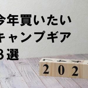 【2021】今年買いたいキャンプギア3選