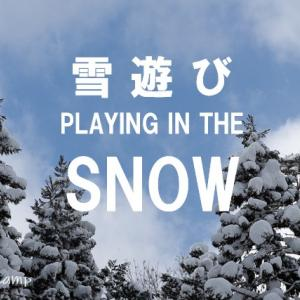 雪遊びに行ったら沼があった話