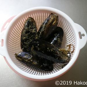 ムール貝(イガイ・カラスガイ)で酒蒸しを作る~まさかの結果が!