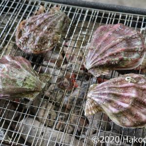 エゾキンチャクガイ(蝦夷巾着貝、ババノテ、母貝)の炭火焼