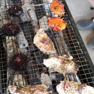 泰安丸直売所から買った魚介類で週末BBQ