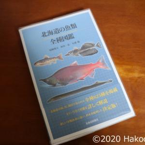 尼岡邦夫 仲谷一宏 矢部衞『北海道の魚類 全種図鑑』(北海道新聞社、2020年)