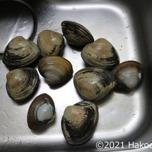 ホッキ貝(北寄貝・ウバガイ)でバター炒めを作る
