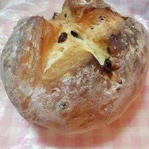 【独身女性の雑料理】突然ハード系パンが食べたくなったからカンパーニュ焼いたら優勝した話