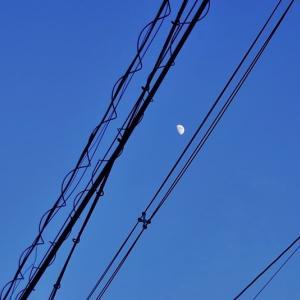 昼 の 月