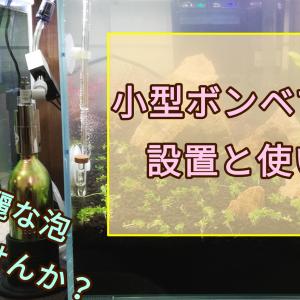 【水槽】小型ボンベでCO2。レギュレーターの使い方と注意点。ボンベの交換方法も。
