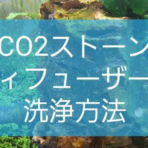 CO2ストーンやCO2ディフューザーの泡が大きい原因は目詰まり。洗浄方法を詳しく解説!!