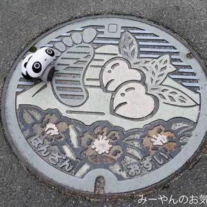 香川ヤドンマンホールの旅(32) 丸亀市B001マンホールカード&座標位置の蓋GETだぜ!
