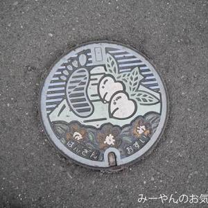 香川ヤドンマンホールの旅(33) 旧飯山町マンホールGETだぜ!