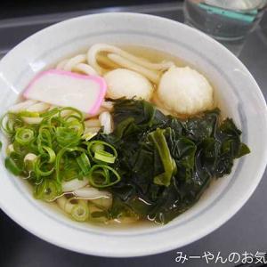 香川ヤドンマンホールの旅(42) 坂出駅で早めのお昼ご飯だぜ!