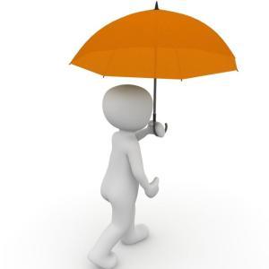 秋篠宮殿下が傘を投げつけた?