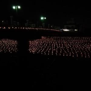 3万本の竹灯籠、日田千年あかり