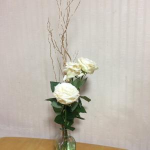 今年初めて購入した花
