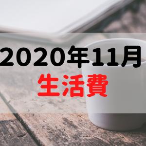 【一人暮らし】2020年11月の生活費