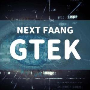 ネクストFAANGを探せ!ゴールドマンのGTEKを調べてみた!