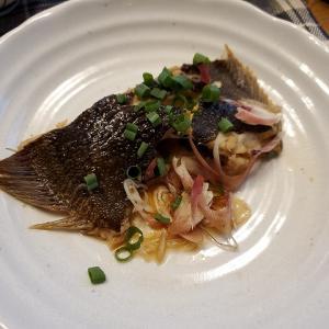 釣り魚料理(刺身・煮付・盛り付け)雑感