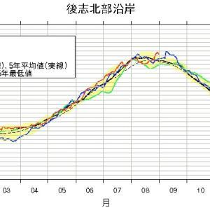 日本海の水温が再び上昇、サケ来遊はどうなる?