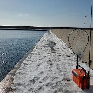 2021.1.25虻田方面リベンジ、餌とワームの2刀流