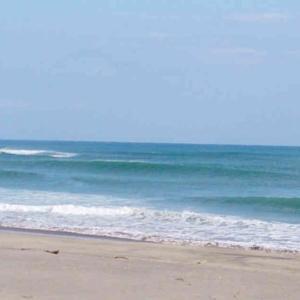 サーフィンは、うつ(鬱)症状の改善に大いに役立つと思います