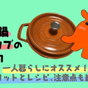一人暮らしにオススメ!鋳物鍋『ストウブ』の魅力!メリットとレシピも紹介