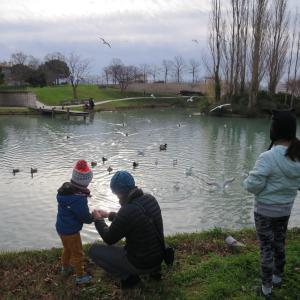 マルセイユの公園