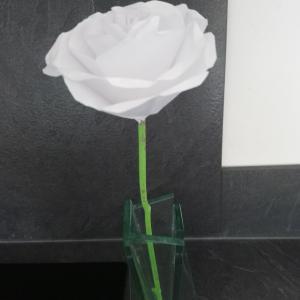 バラをもらいました♡