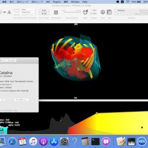 HorliX on OSX 10.15 Catalina (Beta)
