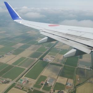 SFC修行再開します? ANA707便 中部-新千歳 搭乗記