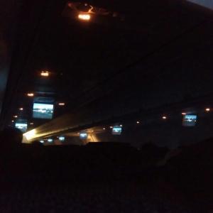 何故だか機内は真っ暗でしたが何はともあれ夕方の飛行機は最高である。 ANA308便搭乗記