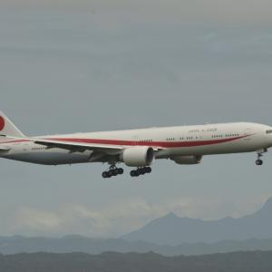 【9/3新千歳空港】政府専用機がタッチアンドゴー訓練していたよ!