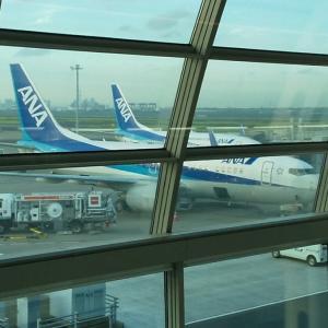 東京~名古屋の移動は飛行機に限る! ANA85便 羽田ー中部 搭乗記