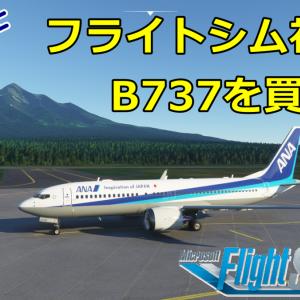 フライトシム初心者でもB737を飛ばせるのか【Microsoft Flight Simulator2020】