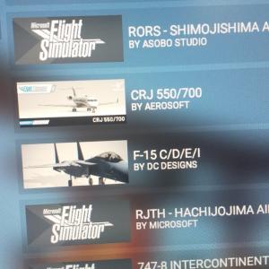 F-15導入したらMSFS2020プレイ不可能になった件