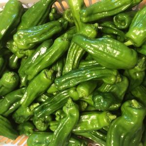 農産物直売所への野菜の出荷を再開します