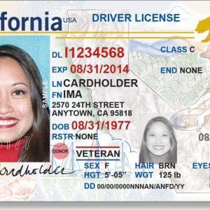 免許証が届いたら