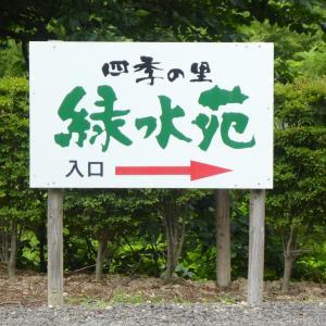 福島県 郡山 四季の里「緑水苑」 おすすめ紫陽花  【後編】