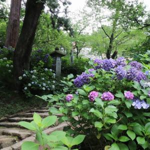 2020年 茨城県 雨引観音 紫陽花を見てきました!(前編)