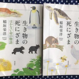 論説文対策②親子で稲垣栄洋の本を読む!