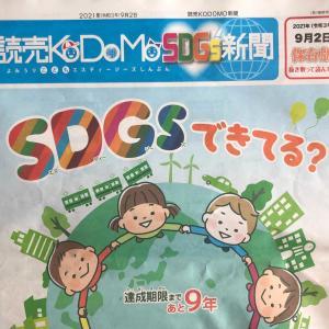 【継続?解約?】読売KODOMO新聞を1年購読しての感想