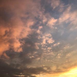 心癒される「オレンジと金の夕焼け🧡✨」