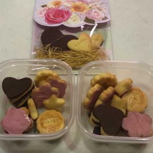 バレンタイン「我が家の恒例行事🌸」手作り桜クッキー
