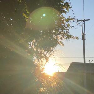 身がしまる朝の空気✨【朝活が気持ちいい季節ヾ(≧▽≦)ノ】