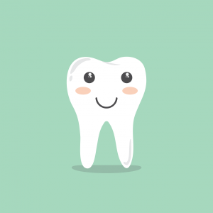 歯科/口腔外科/眼科/生殖器科(歯周病/白内障/緑内障/前立腺疾患)専門獣医がいる動物病院|全国一覧