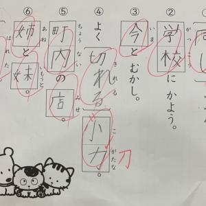 TOEI10,000本ノック200〜日目 熱!