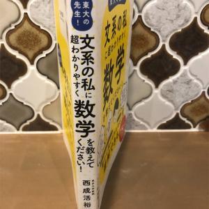 1冊目「東大の先生!文系の私に超わかりやすく数学を教えてください!」