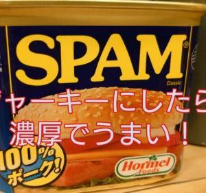 おうちキャンプ飯!【SPAM】をジャーキーにして【燻製】にしたらとんでもなくうまかった件!